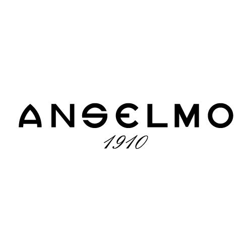 icone_projecto_anselmo-01