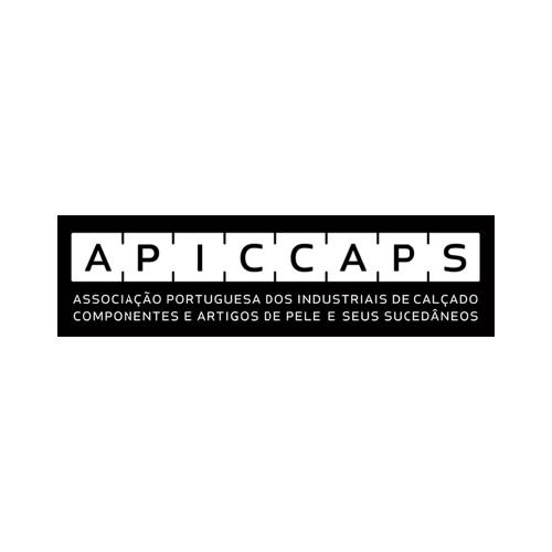 icone_projecto_apiccaps-01