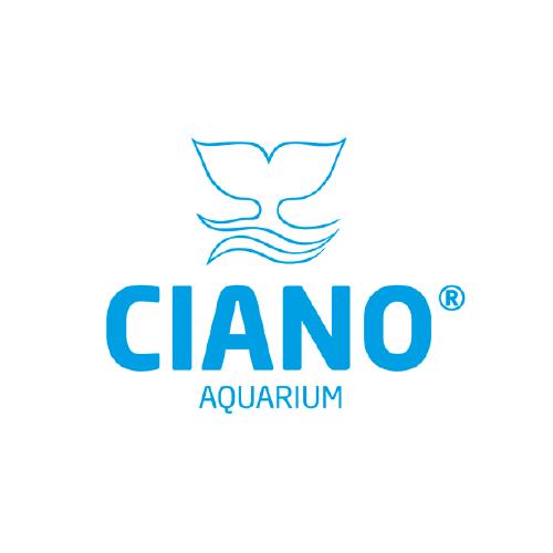 icone_projecto_ciano-01